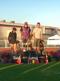 belgian malinois competition meet the trainers u2013 phdogs
