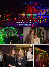rotary gardens business after 5 light show event