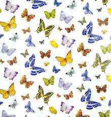 ladybug wrapping paper bug gifts butterfly party supplies and birthday gifts plus