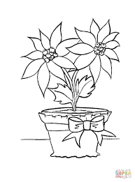 christmas flower in in a pot coloring page free printable
