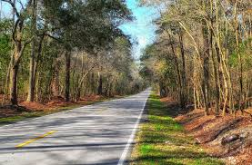 South Carolina scenery images Free photo south carolina landscape scenic free image on jpg