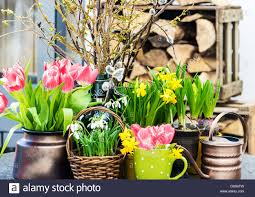 home interior easter decoration with spring flowers tulips stock