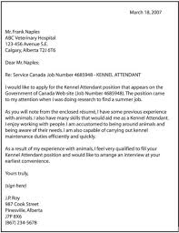 Examples Of Great Cover Letters For Resumes by Example Of A Good Cover Letter For A Job Application The Letter