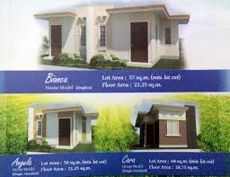 affordable house who else wants an affordable house that you can expand