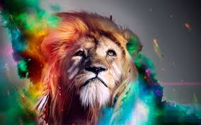 720x1280 lion abstract 4k hd 4k wallpapers in 720x1280 screen