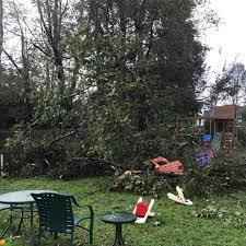 photos wind storm batters maine knocking down trees and power