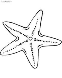 seahorse applique pattern u2026 pinteres u2026