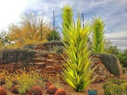 Desert Botanical Garden Chihuly Chihuly Sculpture Yucca Desert Towers Picture Of Desert