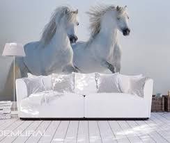 papier peint chevaux pour chambre folie sur le ciel papier peint pour le chambres à coucher