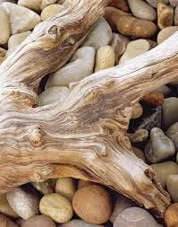 driftwood home decor how to transform driftwood into home decor landscaping ideas with
