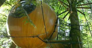 fss what we do free spirit spheres suspended spherical treehouses