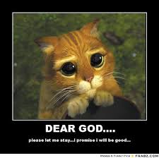 Dear God Meme - dear god memes image memes at relatably com
