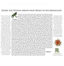 poison arrow frog and english worksheets ks2 free printable