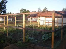 garden fence ideas deer home u0026 gardens geek