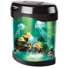 aquarium bureau le bureau décoration en forme aquarium avec méduses multicouleure