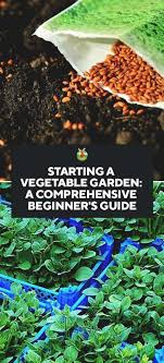 how to start a vegetable garden for beginners starting a vegetable garden a comprehensive guide for beginners
