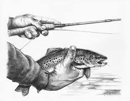 fly fishing blog photos podcasts travel gear and more