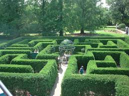 Missouri Botanical Gardens Missouri Botanical Gardens Hedge Maze The Saturday Evening Post