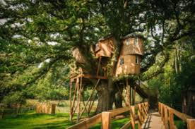 the uk u0027s best treehouse escapes chartwell