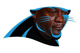 Funny Panthers Memes - fans mock crybaby cam newton panthers with hilarious memes and