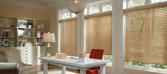 Blinds For Basement Windows by Home