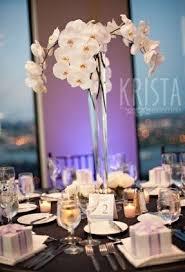 orchid centerpieces orchid arrangements foter
