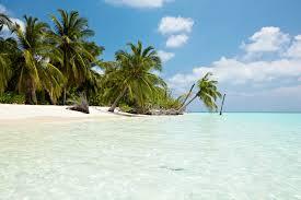 kuredu island resort u0026 spa hotell maldivene ving
