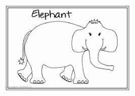 safari animals primary teaching resources printables sparklebox