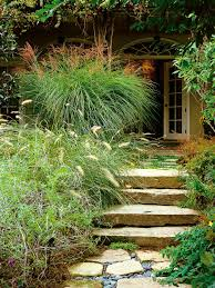 how to landscape a shady yard diy all about grass