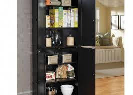 Kitchen Free Standing Storage Kitchen Alluring Kitchen Storage Cabinets Big Lots Creative