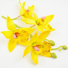 Yellow Orchid Online Get Cheap Silk Yellow Orchid Aliexpress Com Alibaba Group