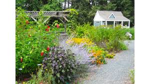 Flowering Shrubs New England - herb society of america learn garden photo album gardens of
