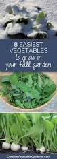 361 best gardening images on pinterest gardening plants and