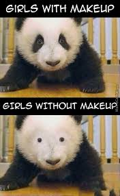 Eyeliner Meme - eyeliner for pandas by getmahbread meme center