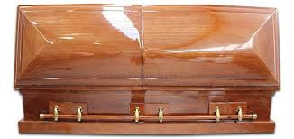 cardboard coffin would you consider a cardboard coffin what you need to