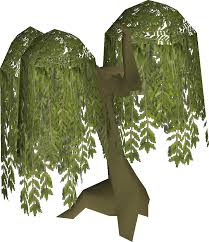 willow tree school runescape wiki fandom powered by wikia