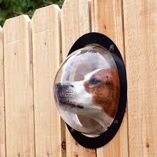 Backyard Accessories 7 Ways To Make Your Backyard A Doggie Paradise