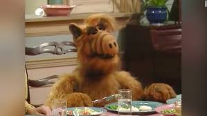 Alf Meme - alf meme generator imgflip