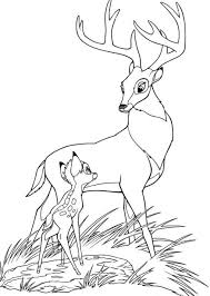 bambi coloring pages free printable cartoon coloring pages of