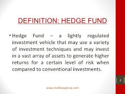 Lightly Definition Hedge Funds A Basic Overview