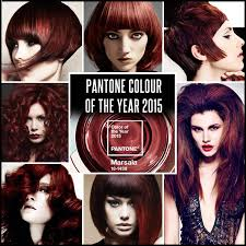 hair colourest of the year 2015 tutorials archives rainbow hair colour