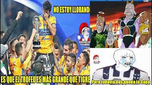 memes tigres campeón de la liga mx tigres derrota a rayados en la