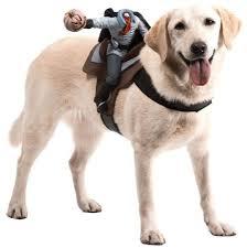 headless horseman costume make your ring dog spookier with a headless horseman