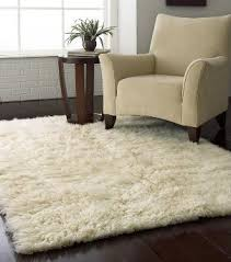 Shop For Area Rugs Very Attractive Area Rugs Ct Stunning Ideas Shop For Area Rugs At