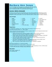 sample resume for account executive sample social media resume sample resume for cleaning job digital strategist sample resume online developer sample resume creative digital media resumes examples graphic professional marketing social manager resume