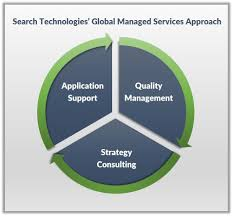 managed services for search and big data applications search