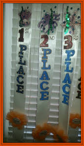 best 25 pageant sashes ideas on pinterest hanging medals award