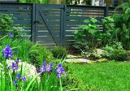 Eco Friendly Garden Ideas Garden Swimming Pool Green Lawn Minimalist Look Violet Flowers