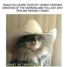 New Memes Today - 230 best what in tarnation images on pinterest dankest memes