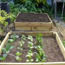 Backyard Garden Layout by New Small Space Vegetable Garden Layout Garden Design